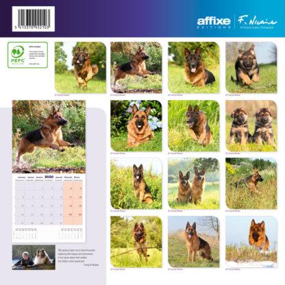 Calendrier German Shepherd 2020