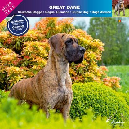 Calendrier Great Dane 2020