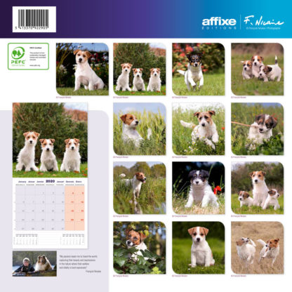 Calendrier Jack Russel 2020