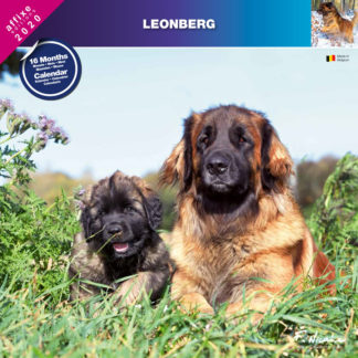 Calendrier Leonberg 2020