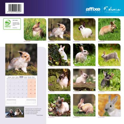 Calendrier Rabbits 2020