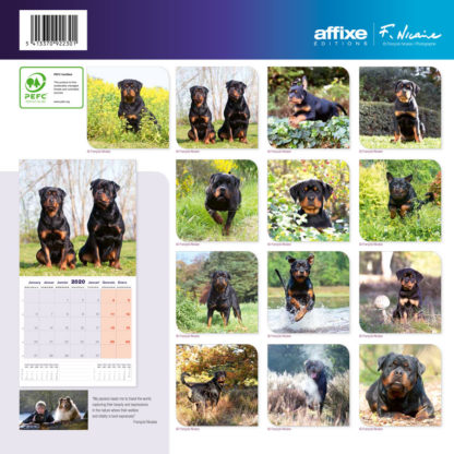 Calendrier Rottweiler 2020