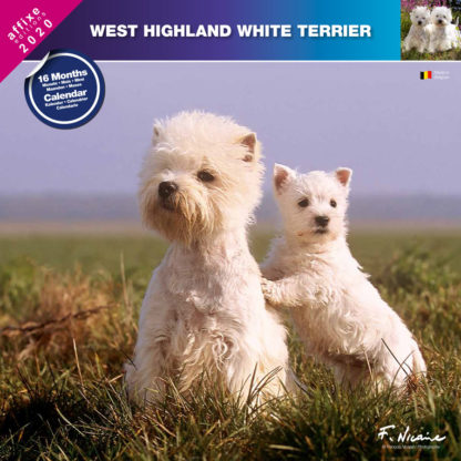 Calendrier West Highland White Terrier 2020