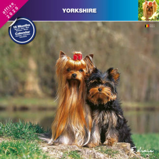 Calendrier Yorkshire 2020