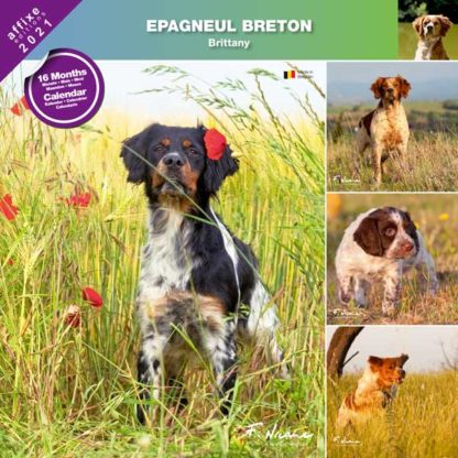 Calendrier Brittany 2021
