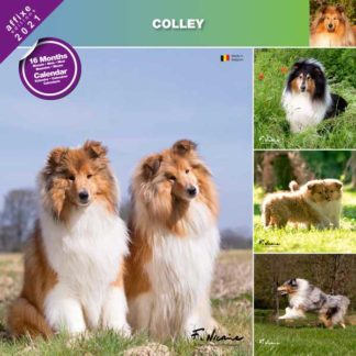 Calendrier Colley 2021
