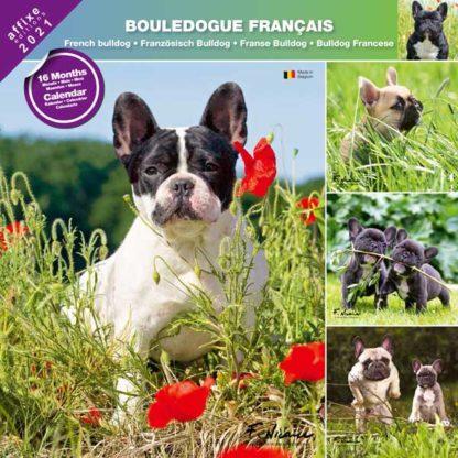 Calendrier French Bulldog 2021