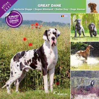 Calendrier Great Dane 2021