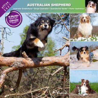 Calendrier Australian Shepherd 2021
