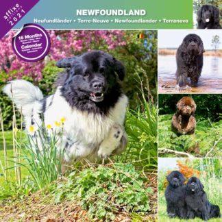 Calendrier Newfoundland 2021