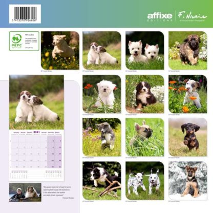 Calendrier Puppies 2021