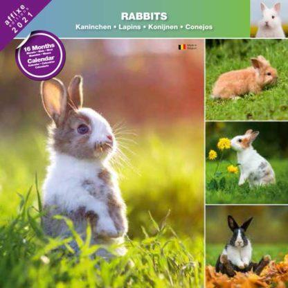 Calendrier Rabbits 2021