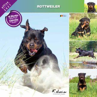 Calendrier Rottweiler 2021