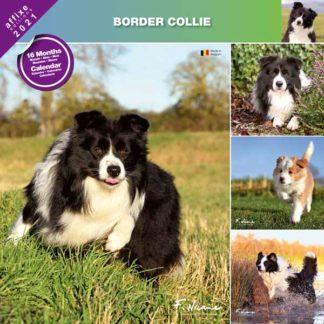 Calendrier Border Collie 2021